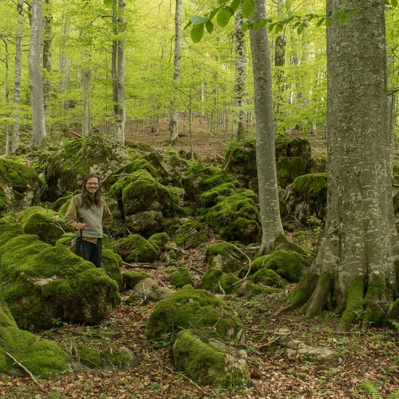Fakulta lesnická a dřevařská Česká zemědělská univerzita v Praze